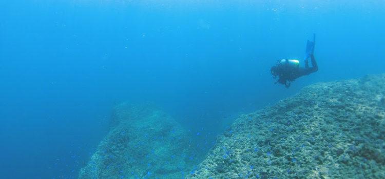 透明度水温魚影海況、最高な雲見でダイビング!