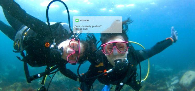 伊豆海洋公園でライセンス取得