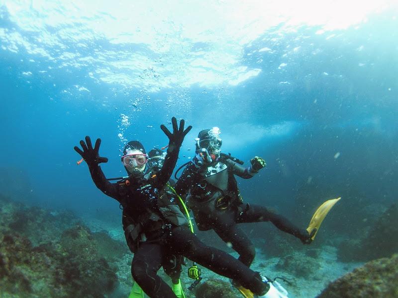 伊豆海洋公園で体験ダイビング