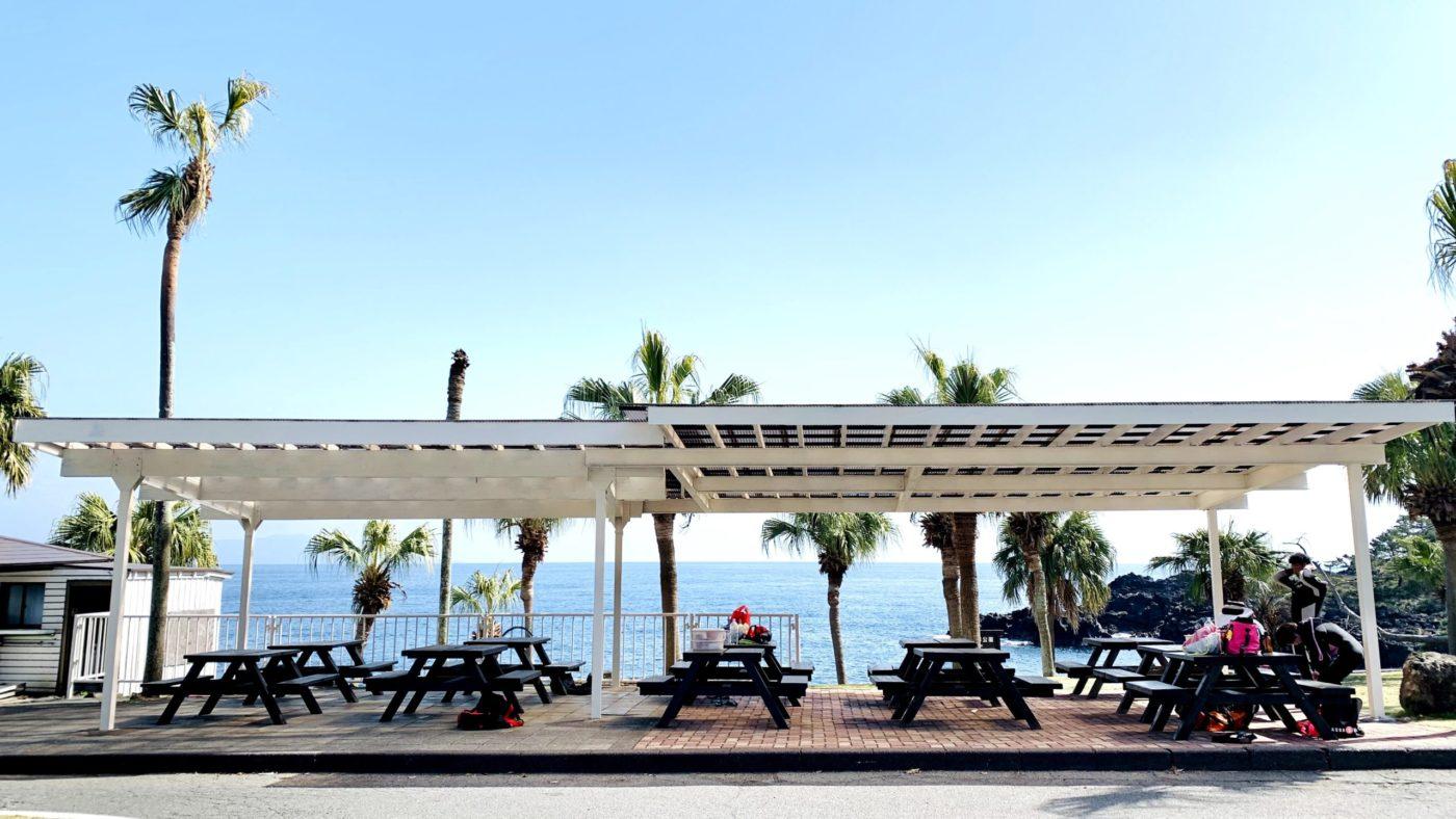 伊豆海洋公園を中心に伊豆の海をご案内する少人数制ダイビングサービスです