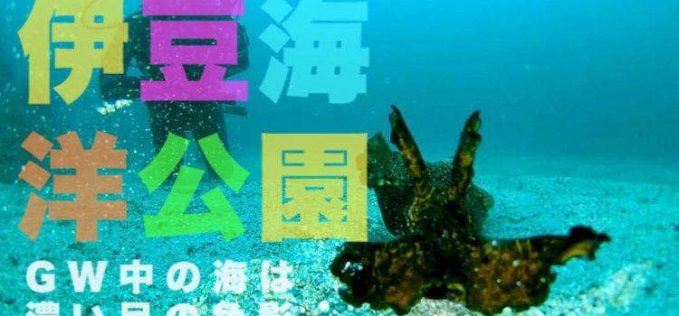 GWだけど空いてる伊豆海洋公園。感染症対策を万全に楽しもう!